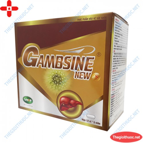 Gambsine New