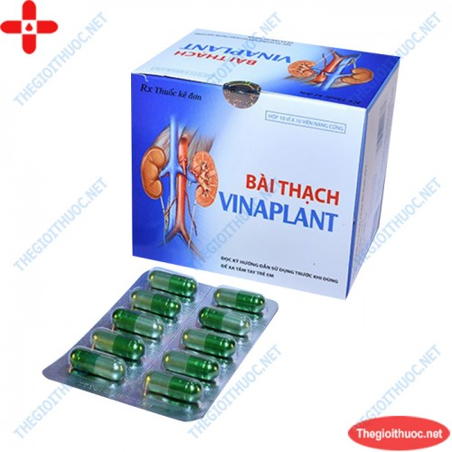 Bài thạch Vinaplant